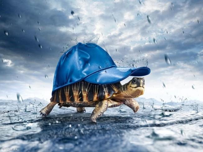 Al mal tiempo... Buenos Gadgets!